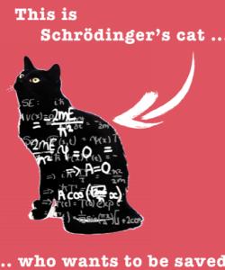 Catsroding